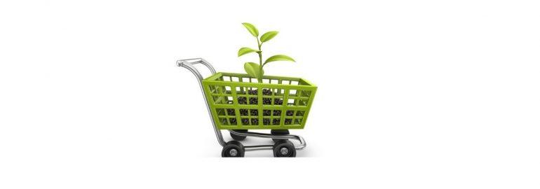 Educação para o Consumo Sustentável